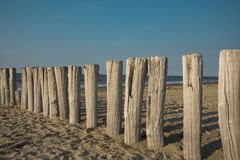 Row breakwaters in the sand, Cadzand Bad, The Netherlands. Row breakwaters on the North Sea beach, Cadzand Bad, The Netherlands. Sunny day and blue sky stock images