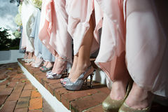 Row of bridesmaids in dresses. Row of standing bridesmaids showing pink dresses, legs and sparkly shoes royalty free stock photos