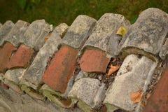 row-of-broken-roof-tiles Stock Photography