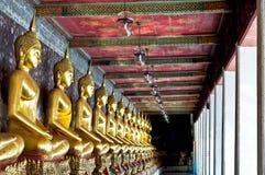 A row of buddha. A row of golden buddha Wat Sutuch in Bangkok Thailand Royalty Free Stock Photos