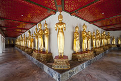 Row of buddha image Royalty Free Stock Photos