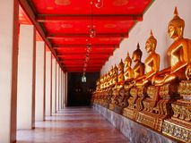 A row of Buddha images at Wat Pho. A row of golden Buddha images at Wat Pho in Bangkok, Thailand royalty free stock photos