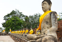 Row of buddha statue at historical park. Wat Chaiwatthanaram temple, Thailand Royalty Free Stock Photo