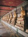 Row of Buddha statues royalty free stock photos