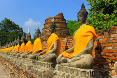 The Row of Buddha statues Royalty Free Stock Photography