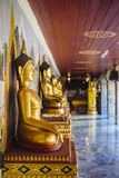 Row of Buddha Statues. Royalty Free Stock Images