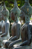 Row of Buddha Statues Stock Image