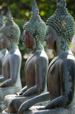 Row of Buddha Statues Royalty Free Stock Images
