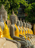 Row of Buddha statues Stock Images