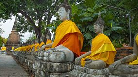 Row of Buddha statues in orange clothes Royalty Free Stock Photo
