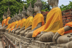 Row of Buddha statues at temple. In Ayutthaya, Thailand Royalty Free Stock Photo