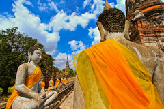 A row of buddha statues at Wat Yai Chai Mongkhon in Thailand Royalty Free Stock Image
