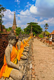 A row of buddha statues at Wat Yai Chai Mongkhon in Thailand Stock Photography