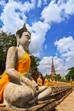 A row of buddha statues at Wat Yai Chai Mongkhon in Thailand Royalty Free Stock Photo