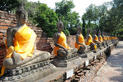 Row of Buddha Status Royalty Free Stock Images