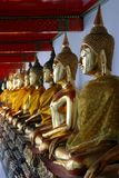 Row of buddhas Royalty Free Stock Photos