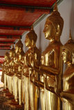 Row of buddhas Royalty Free Stock Photo