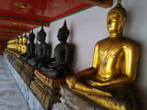 A row of Buddhas Royalty Free Stock Photo