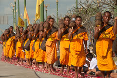Row of Buddhist hike monks on street. Stock Photography