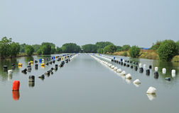 Row of buoys in aquatic farm Stock Photo