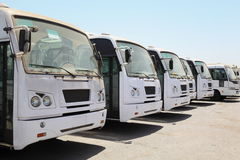 Row of buses waiting on bus station near port Stock Photography