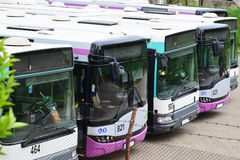 Row of busses Royalty Free Stock Image