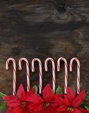 Row of Candy Canes on wood background Royalty Free Stock Image