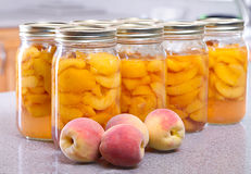 Row of canned peaches Royalty Free Stock Image