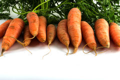 Row of carrots with leaves as a frame background isolated on whi Royalty Free Stock Photography