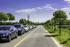 A row of cars on the road royalty free stock image