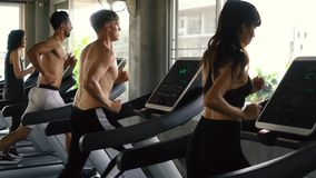 Row of people exercising on treadmills at modern gym. Fitness men and women working out together