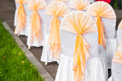Row of chairs tastefully decorated for a part event Stock Image