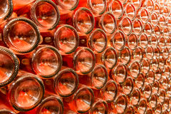 A row of champagne bottles - Wine cellar Royalty Free Stock Photo