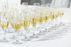 Row of champagne glasses Royalty Free Stock Photos