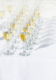 Row of champagne glasses Royalty Free Stock Photography