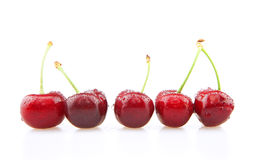 A row of cherries Royalty Free Stock Photos