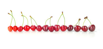 Row of cherries Royalty Free Stock Images