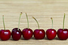 Row of cherries on natural hessian background. Row of cheries on natural hessian background Stock Image