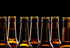 Row of chilled unopened brown beer bottles Royalty Free Stock Photos