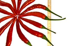 Row chilli and a measurment tape on white. Royalty Free Stock Photo