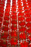 Row of Chinese lantern. Royalty Free Stock Images