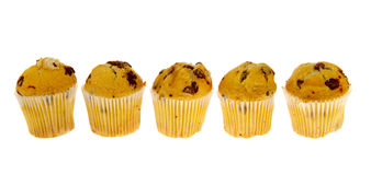 Row chocolate muffins Royalty Free Stock Photo