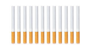 Row of cigarettes Royalty Free Stock Image