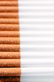 Row of cigarettes Stock Photography