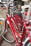 Row of city bicycles parked near hostel Stock Photography
