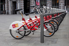 A row of city bikes for rent in Antwerp Belgium. A row of city bikes for rent in the town of Antwerp Belgium Stock Image