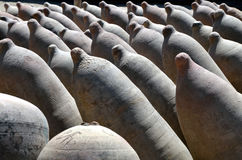 Row of Clay Wine Fermenation Storage Pots Royalty Free Stock Photo