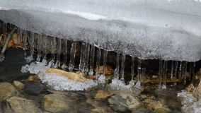 Row of clean transparent icicles hanging in cold forest creek water flow. In northern norway stock video footage