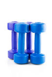 Row of color dumbbell Royalty Free Stock Photography