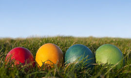 Row of Colored Easter Eggs on Grass with Blue sky Royalty Free Stock Photo